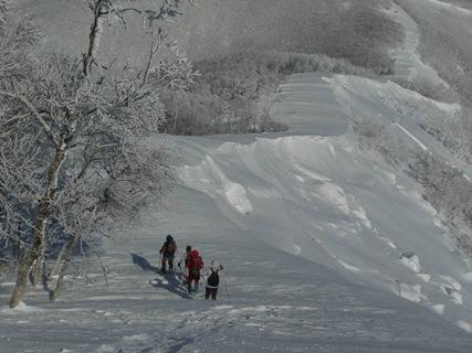 雪崩の痕跡