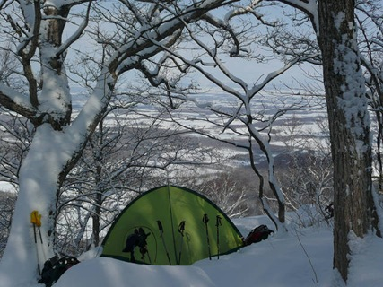 緑のテントが活躍です